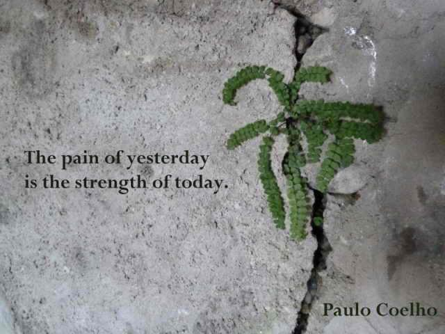 New Day – Paolo Coelho Quote and Postcard Image   Lotus Mama ...
